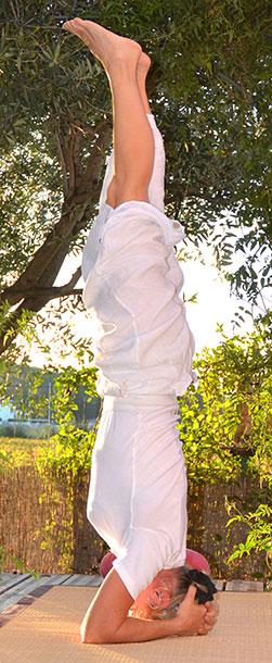 Cours de Yoga et séances de Shiatsu Montpellier